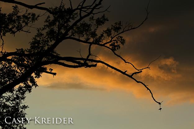 Sunset at MIddle Creek Wildlife Management Area, June 14, 2011.