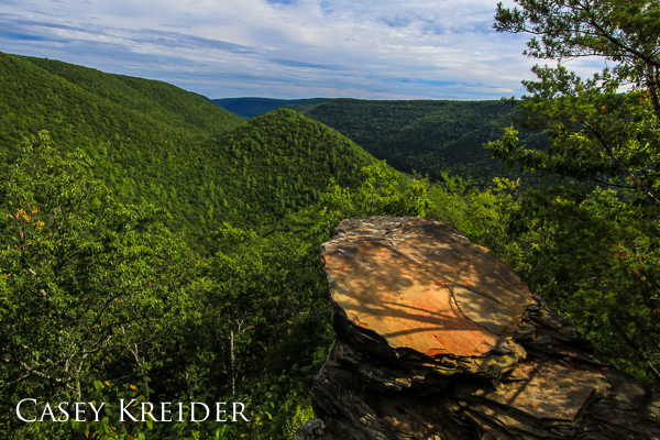 View south over Wolf Run Wild Area and Pine Creek Gorge from Raven's Horn on the Golden Eagle Trail in Lycoming County.