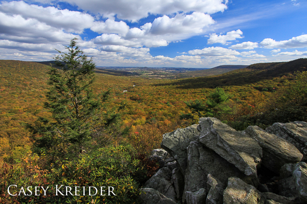 Fall foliage fills the valley from Hawk Mountain Sanctuary's South Lookout.