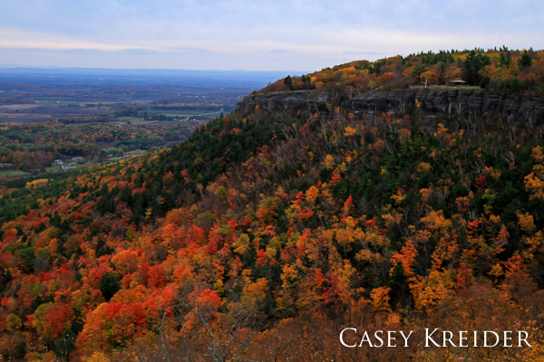 Autumn color on the Helderberg Escarpment at John Boyd Thacher State Park in Albany County, New York.