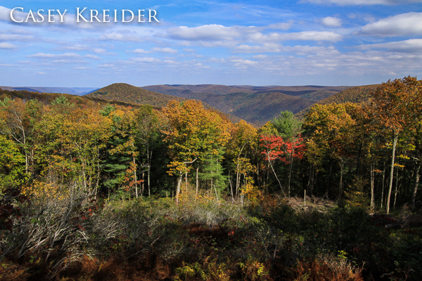 View of Hemlock Mountain and the Pine Creek Gorge from a clearing along Big Trail Scenic Road in Lycoming County.