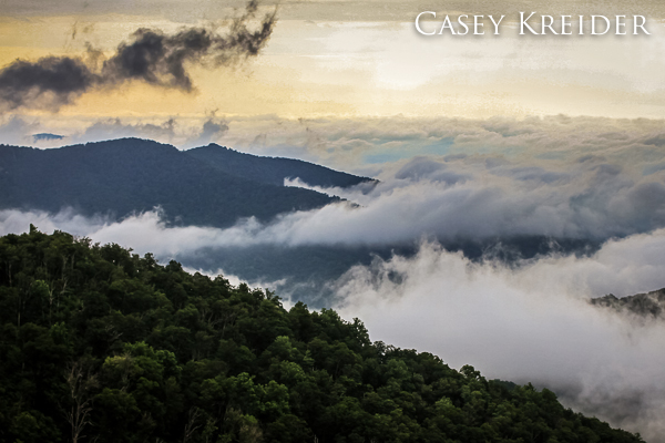 A blanket of morning fog rolls off the mountains from Buck Hollow Overlook on Skyline Drive in Shenandoah National Park.