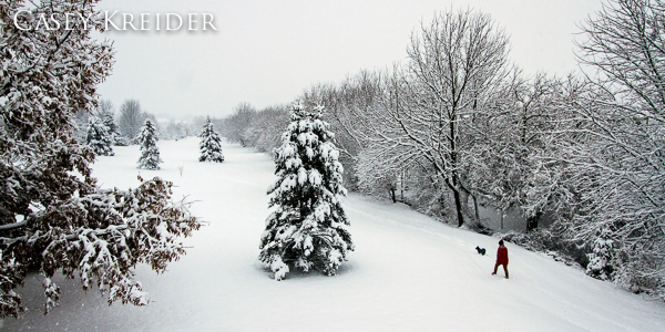 A couple photos out in the snow yesterday in the Lititz area.