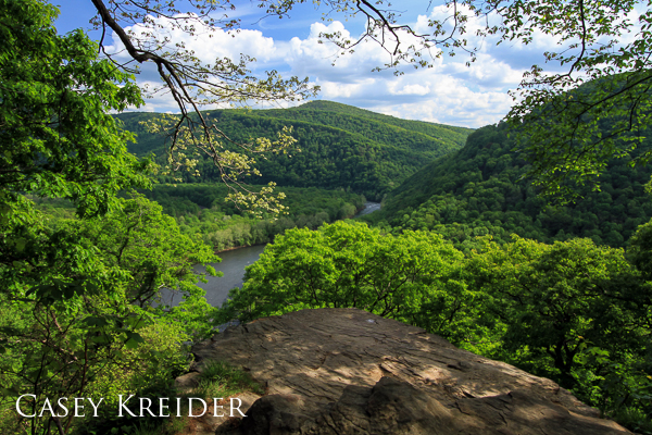 Spring foliage frames a view of the Youghiogheny River Gorge from the Laurel Highlands Hiking Trail in Ohiopyle State Park in Fayette County.