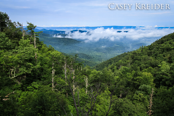 Morning fog rolls across the valley from a ledge above Lewis Falls in Shenandoah National Park.
