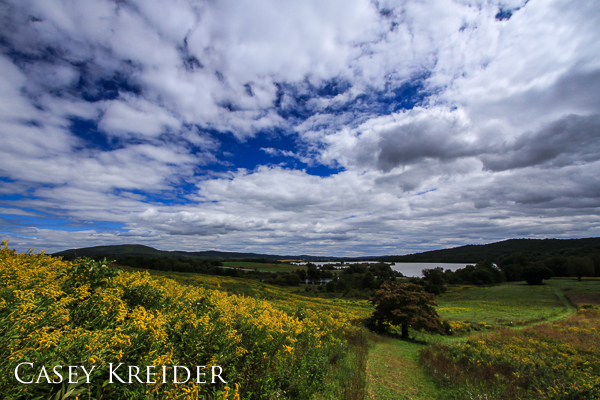 Sunlight breaks through the cloud cover to light a field of goldenrod at Middle Creek Wildlife Management Area.