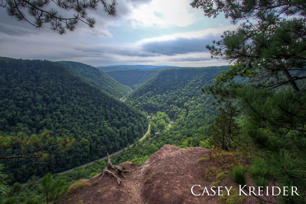 View of the Pine Creek Gorge (Pennsylvania Grand Canyon) from the Barbour Rock and West Rim Trails in Tioga State Forest.