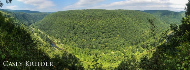 Panorama from Bradley Wales Picnic Area on the Pine Creek Gorge (Pa. Grand Canyon) in Tioga County.