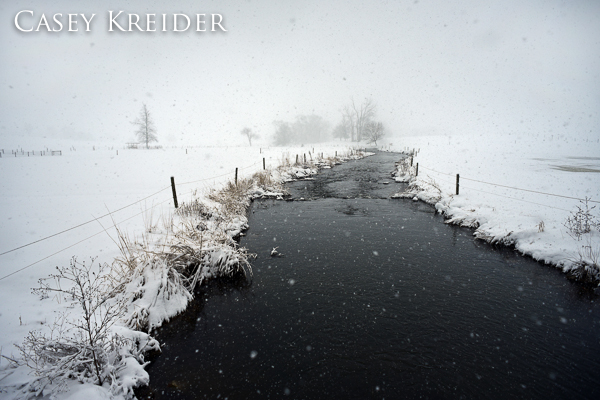 snowstorm blog 2