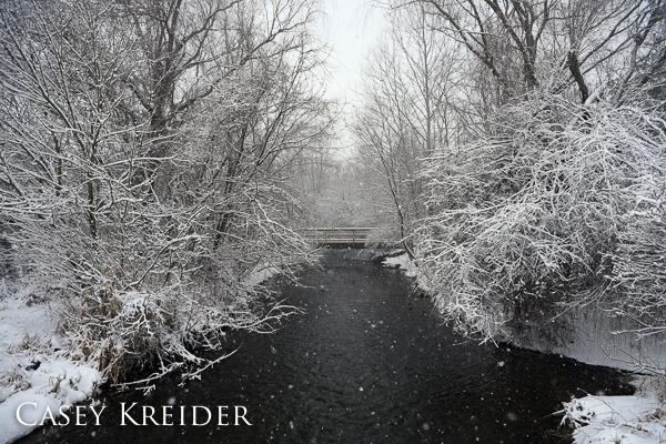 snowstorm blog 7