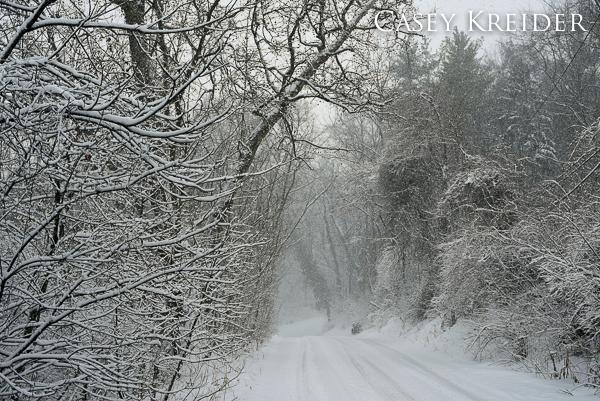 snowstorm blog 8